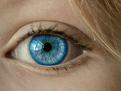 Ce qui doit être vu c'est ce qui est en train de se voir